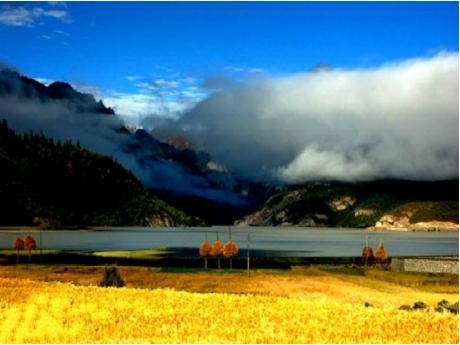 Nyingchi travel Bomi-Ranwu lake 5 Days